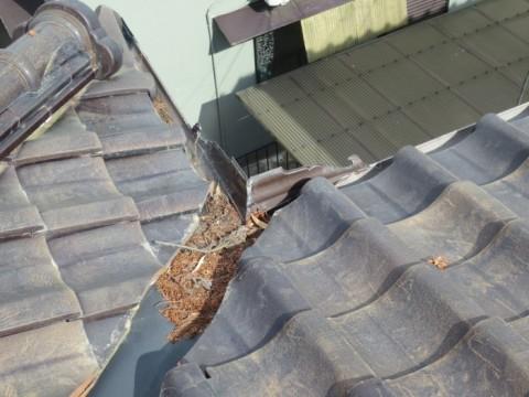屋根上 掃除前